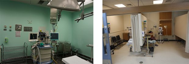 Surgical Department Redevelopment